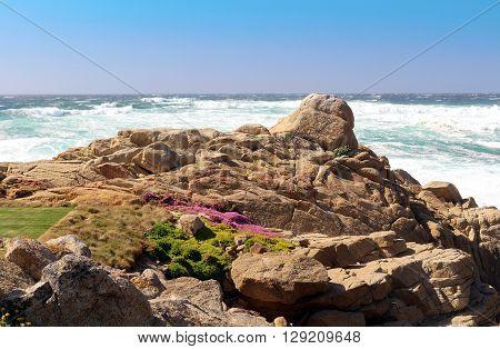 Rocky beach at Pebble Beach in California