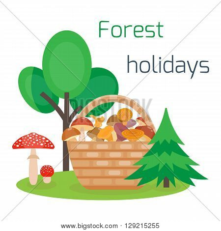 Vector basket of different edible mushrooms. Forest holidays concept. Camping. Forest rest. Picking mushrooms in the basket. Cartoon style