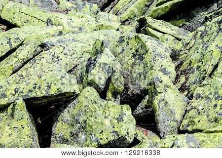 Green mossy stones can be used as background