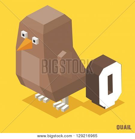 Q for Quail. Animal Alphabet collection. vector illustration