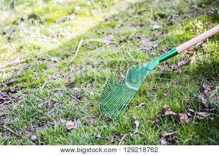 green rake on the grass - prepared for gardening