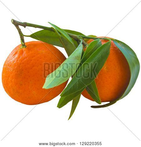 Tangerine snack yellow orange gourmet one tasty round color skin. ** Note: Soft Focus at 100%, best at smaller sizes