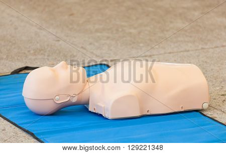 Model Of Dummy Used For Cpr Training