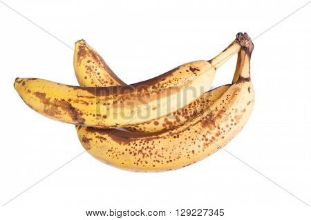 Branch of overripe bananas isolated on white background