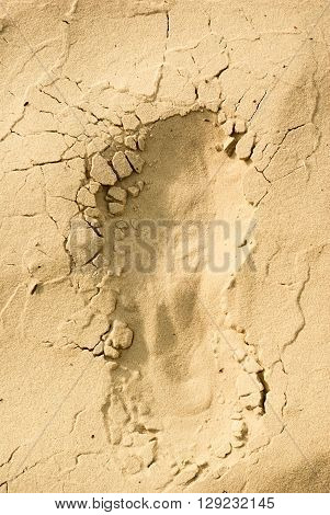 Footstep traces on dry sand in nature