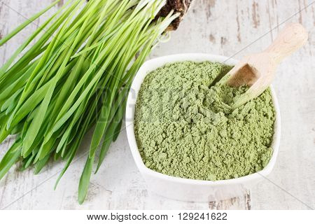 Barley grass with heap of young powder barley in glass dish on old wooden background healthy nutrition and lifestyle body detox