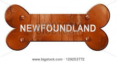 Newfoundland, 3D rendering, rough brown dog bone