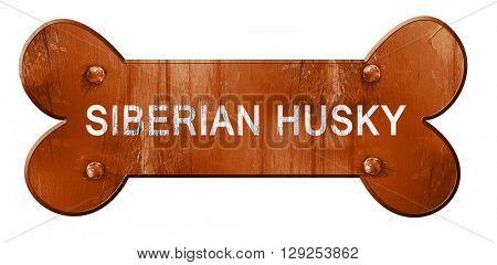 Siberian husky, 3D rendering, rough brown dog bone