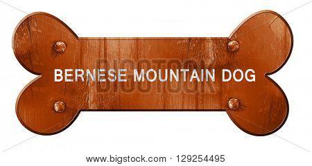 Bernese mountain dog, 3D rendering, rough brown dog bone