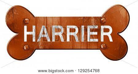 Harrier, 3D rendering, rough brown dog bone