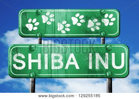 Shiba inu, 3D rendering, rough green sign with smooth lines