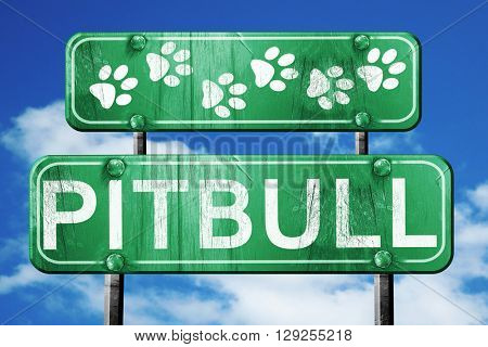 Pitbull, 3D rendering, rough green sign with smooth lines