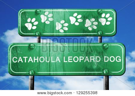 Catahoula leopard dog, 3D rendering, rough green sign with smoot