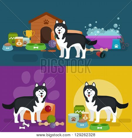Pet shop, dog goods and supplies, store products for dog care