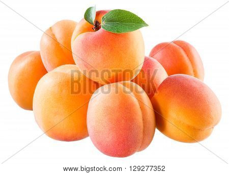 Ripe juicy apricots isolated on white background