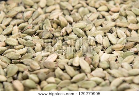 dried green Cardamom seed pods background texture