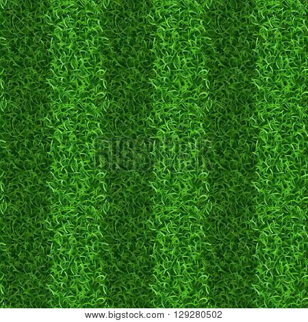 Striped green grass field seamless vector texture. Grass repeat organic, grass gridiron field, soccer or football playing grass field illustration