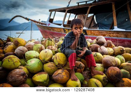 INDONESIA, BALI FEB 06, 2013: Boy sitting on large mountain of coconuts on the Indian ocean. February 06, in Gili Meno.