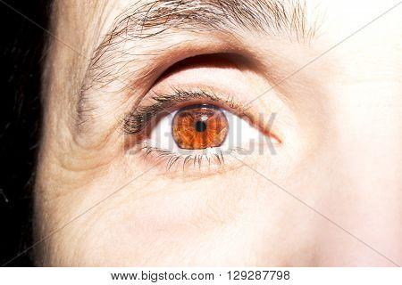 A Beautiful mature woman brown eyes closeup