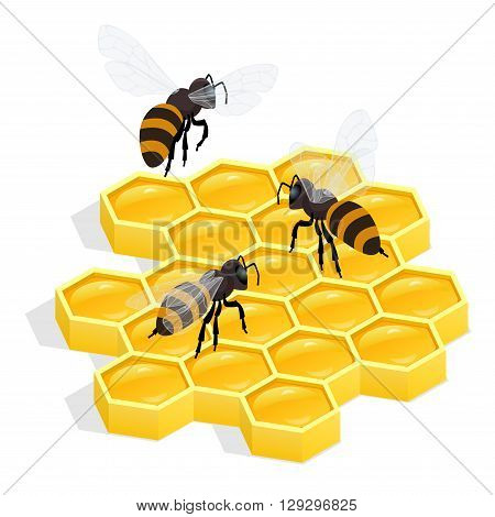 Honeycombs Flat 3d vector isometric illustration. Honey natural healthy food production