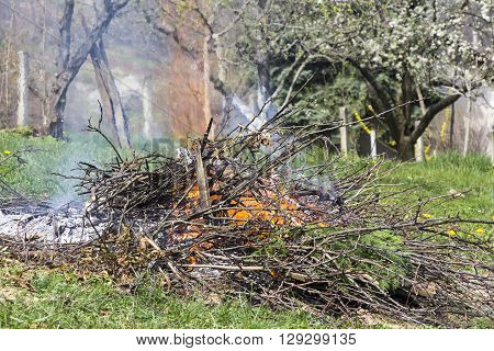 Fire and Smoke from during Burning of garden waste