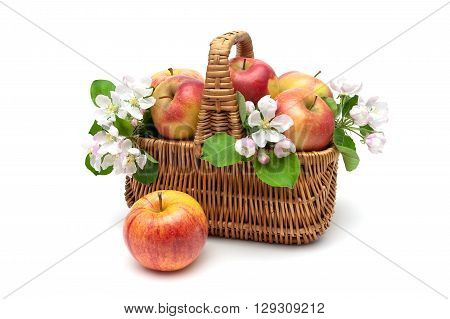 basket with apples and apple flowers on a white background. horizontal photo.