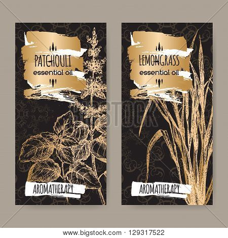 2 labels with Pogostemon cablin aka Patchouli and Cymbopogon aka lemongrass sketch on elegant black and golden lace background. Aromatherapy series.