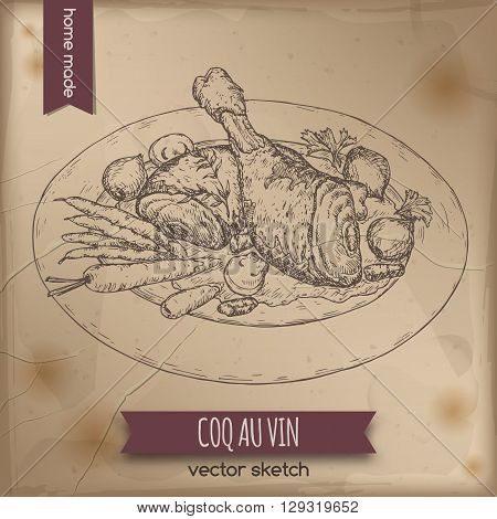 Vintage coq au vin aka chicken in wine vector sketch placed on old paper background. French cuisine. Great for restaurant, cafe, menu, recipe books, food label design.