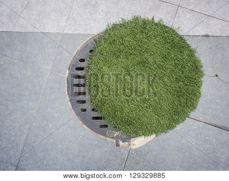 Circle Steel Manhole Cover Was Hid By Artificial Grass