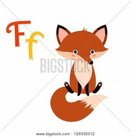 Cute zoo alphabet. F letter. Funny cartoon fox. Alphabet design in a colorful style. Kids abc. Kids education. Vector illustration isolated on white background.