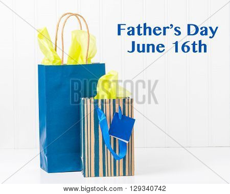 Two blue gift bags with tissue for Fathers Day.