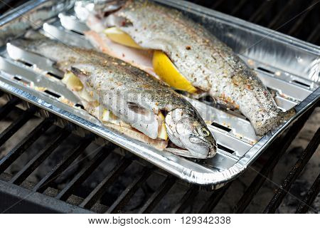 Rainbow trout on a foil dish ready to be grilled