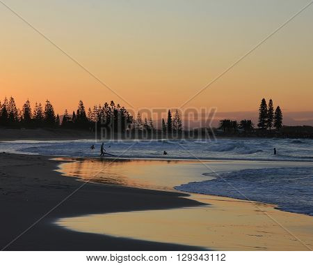 Evening scene in Port Macquarie Australia. Beach and silhouettes of trees.