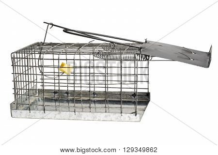 Mousetrap with yellow cheese isolated on white