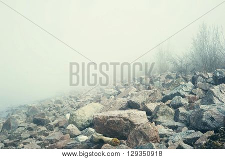 Spooky landscape with fog