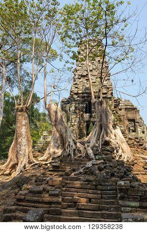 Ruins of Prasat Preah Palilay temple at Angkor Wat complex Siem Reap Cambodia