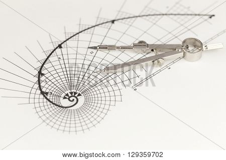 drawing of the golden section & compass