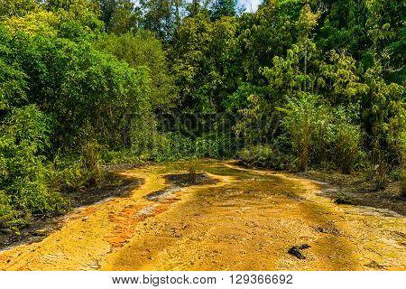 Khao Pra Bang Khram Wildlife Sanctuary way to Emerald Pool aka Sa Morakot tourist destination. National Park Krabi Thailand. Green tropical forest Southeast Asia. Yellow and orange soil