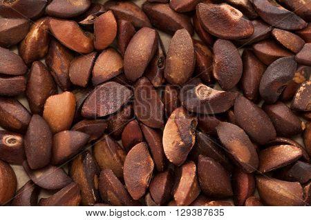 Macro closeup background texture of Organic Indian gooseberry (Phyllanthus emblica) seeds.