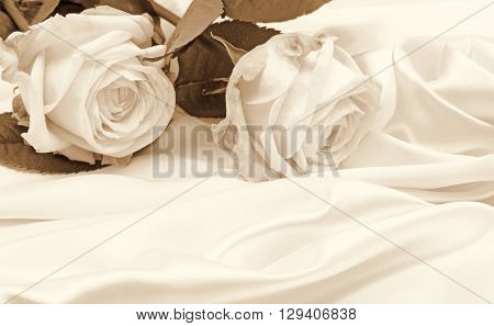 Beautiful white roses on white silk as wedding background. In Sepia toned. Retro style