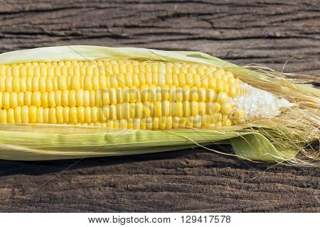 the sweet corn with wooden background with morning sun light
