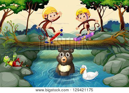 Monkeys on skateboard in the forest illustration
