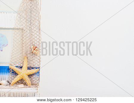 white wall with starfish and shellfish .