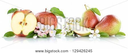 Apple And Pear Apples Pears Fruit Fruits Isolated On White