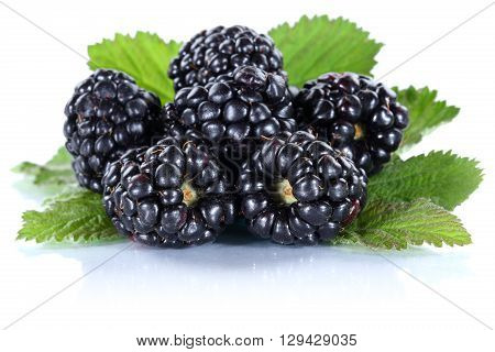 Blackberry Fruit Blackberries Berry Berries Fresh Fruits Isolated On White