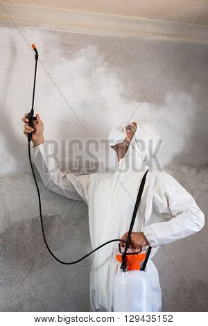 Manual worker using pest spray on wall of house