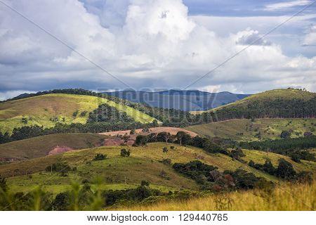 Jungle and blue sky - Brazilian tropical landscape Brazil