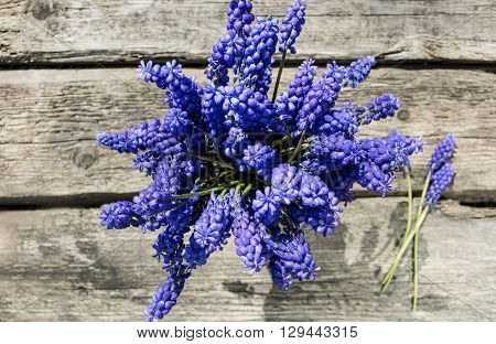 bouquet of hyacinths on the rough old wooden table top view
