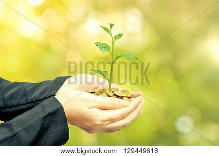 Business growth with csr practice / Business investment with environmental concern