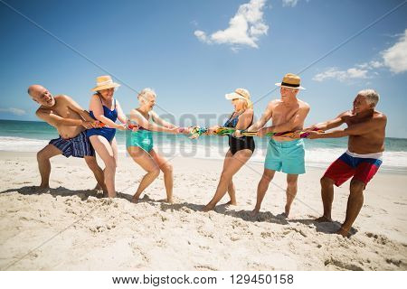 Seniors playing tug of war at the beach on a sunny day